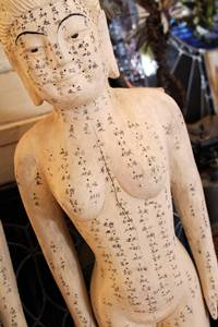 acupuncture teaching aid