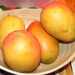 mangoes are a good source of Vitamin A